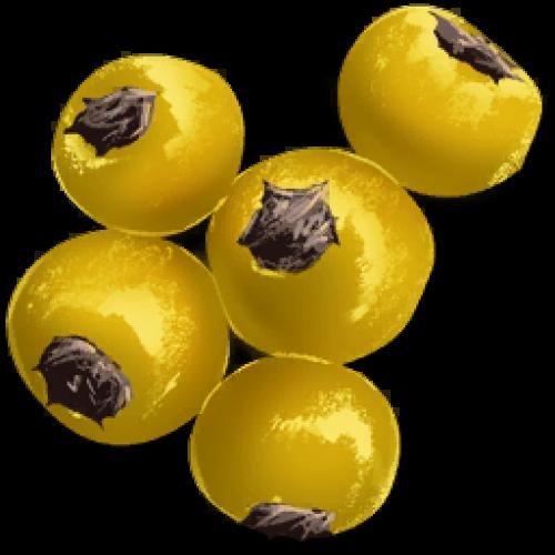 Семена ягод Amarberry