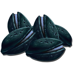 Azulberry_Seed