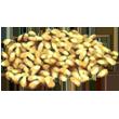 Longrass_Seed
