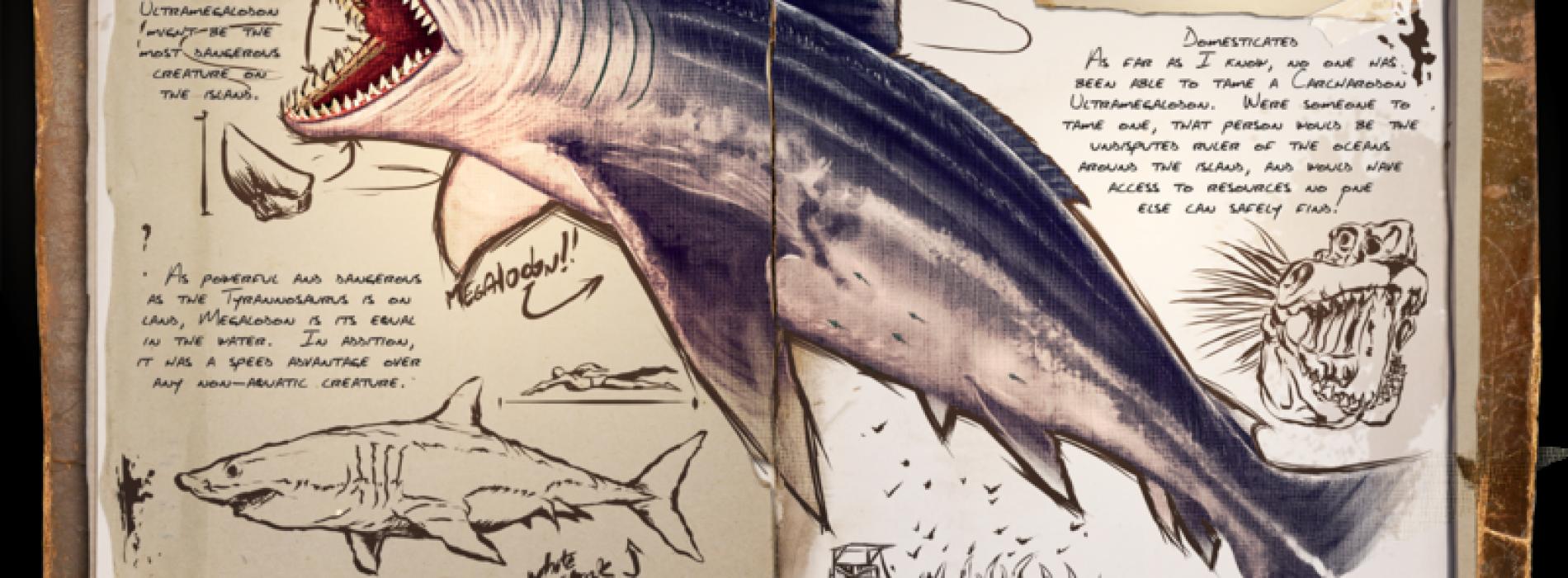 Акула. Мегалодон Megalodon