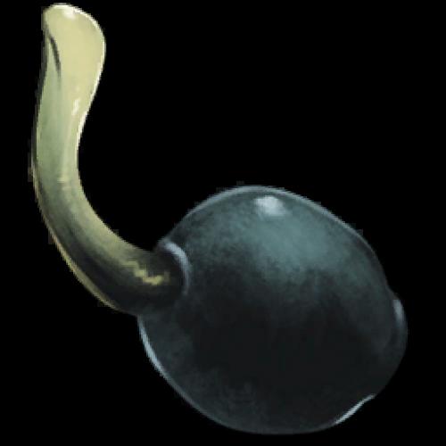 Семена ягод Наркоберри Narcoberry Seed