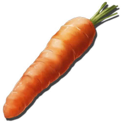 Морковь. Семена Rockarrot Seed