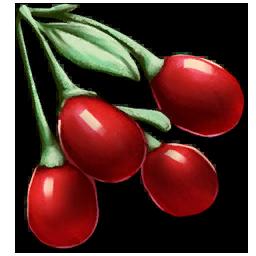Tintoberry