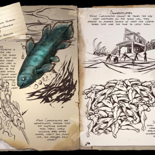 Латимерия Coelacanth