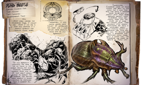 Dung Beetle Навозный Жук
